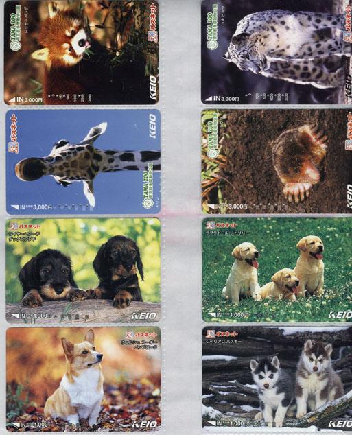 IMG京王09動物.jpg